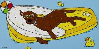 Chocolate Float - Chocolate Labrador Retriever