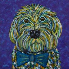 Mr. Doodle - Goldendoodle