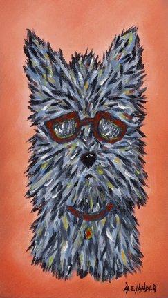Scruffy - Terrier