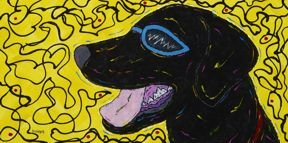 Wild & Loving It! - Labrador Retriever