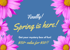 $150 Value for $50 Spring Mystery box of Fun!