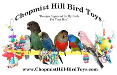 Chopmist Hill Bird Toys