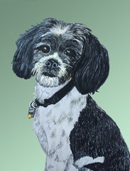 "Custom Pet Portraits 8"" X 10"" on Canvas (Other Sizes Available as Well)"