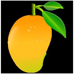 Grapefruit & Mango Bath Bomb