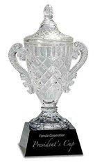 Crystal Cup Award