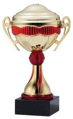 Budget Metal Trophy Cup
