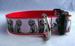 Handmade Dalmation Dog Collar