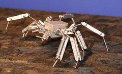 Spider Armature
