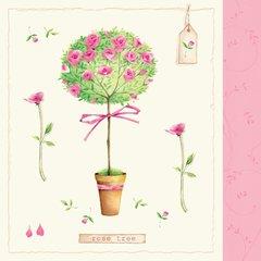 Everyday Rosetree