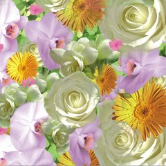 """Springflowers"""