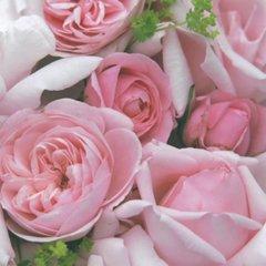 Everyday Charming Rose
