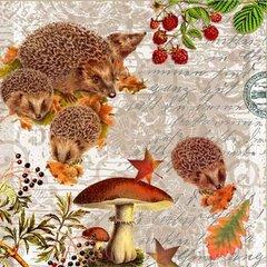Fall-Hedgehog Family