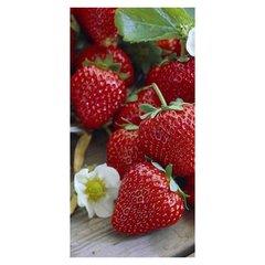"""Design Edition Strawberry"""
