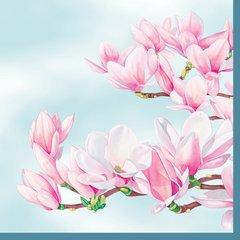 Spring - Magnolia blue