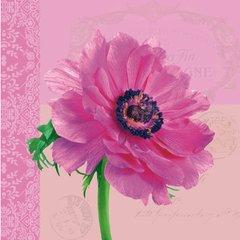 Everyday Anemone pink