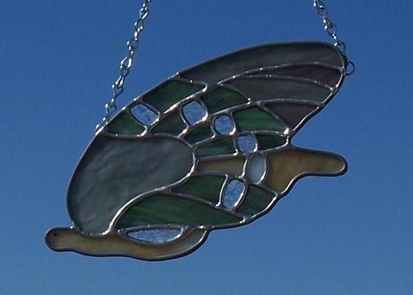 Butterfly, wild