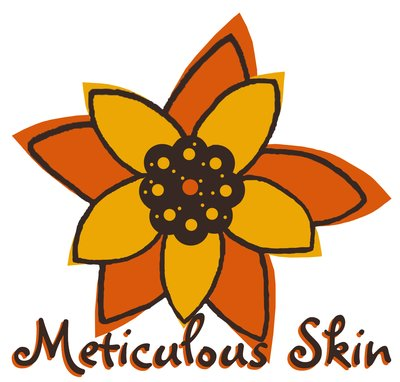 Meticulous LLC