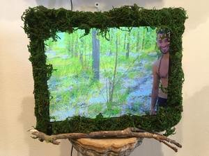 Allison Kotzig, Video all Installation: Centaur Forest II,2016,Mixed Media with Video