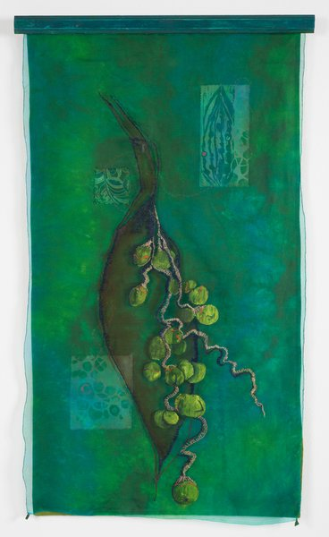 Andrea F Huffman Palm Seeds, 2013