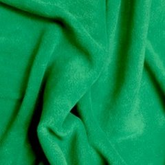 Polar Fleece - Emerald