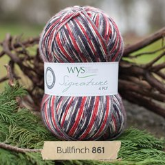 West Yorkshire Spinners - Signature 4ply - Bullfinch