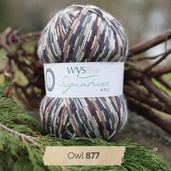 West Yorkshire Spinners - Signature 4ply - Owl