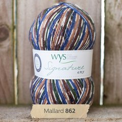 West Yorkshire Spinners - Signature 4ply - Mallard