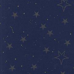 Michael Miller - Magic - Lucky Stars - Navy