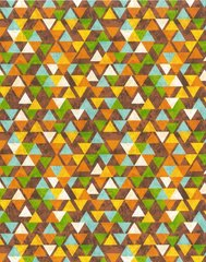 Blank Quilting - Safari Expedition - Triangles