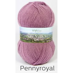 West Yorkshire Spinners - Aire Valley DK - Pennyroyal