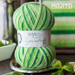 West Yorkshire Spinners - Signature 4ply - Mojito