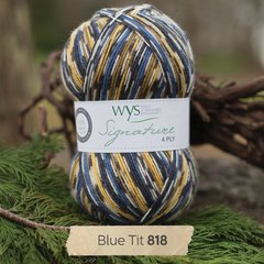 West Yorkshire Spinners - Signature 4ply - Blue Tit