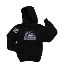 AHU Youth Hooded Pullover Sweatshirt with Knight Logo