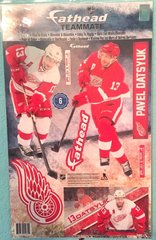 Pavel Datsyuk Detroit Red Wings Fathead Teammate NHL 6 Decals Hockey