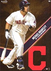 """MLB 2015 MICHAEL BRANTLEY CLEVELAND INDIANS Fathead Tradeable 5"""" X 7"""""""