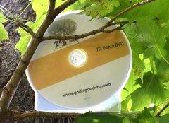 (b) Jesse Tree Journey VBS Dance DVDs