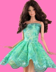 Lace Barbie Dress-Modest Barbie Clothes-Shoes-Earrings