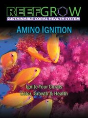 Amino Ignition 500ML