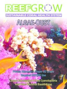 Algae-Oust 500ML