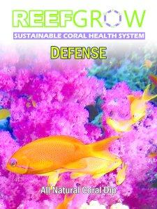 Defense Coral Dip 500ML
