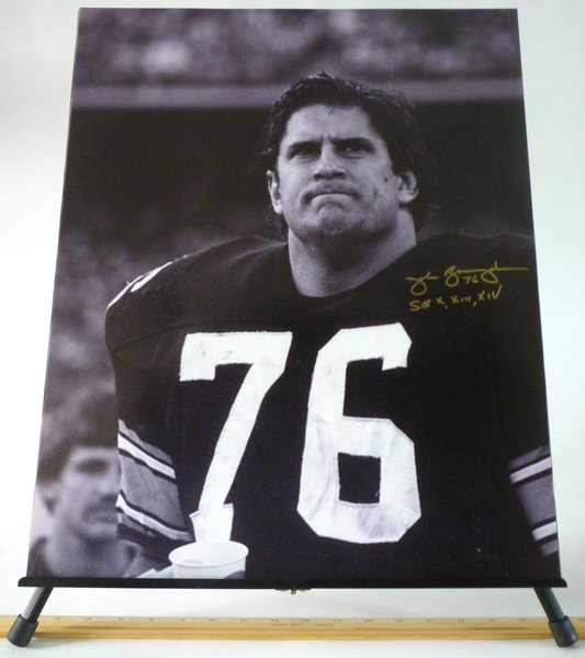 John Banaszak Pittsburgh Steelers Signed 16x20 Photo