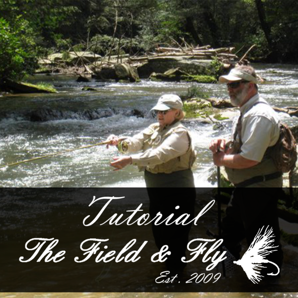 fly fishing trips for beginners georgia fly fishing