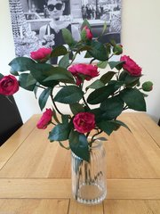 GORGEOUS NATURAL STYLE VASE ARRANGEMENT - CERISE PINK CAMELLIA STEMS SET IN FAUX WATER