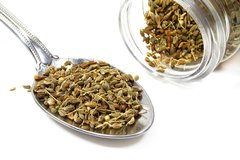 Anise Seed Whole and Ground