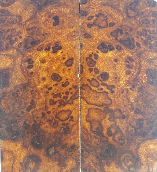 Snap Arizona Ironwood Llc Photos On Pinterest