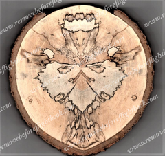 Spalted Spirit #2