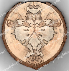 Spalted Image #3