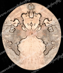 Spalted Spirit #7