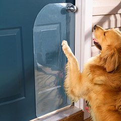 Door Dog Scratch Protectors