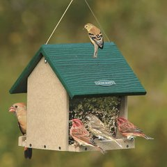 Eco-Friendly Large Hopper Bird Feeder